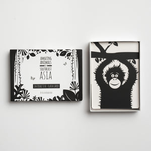 black and white flash cards, high visual contrast, animals, baby shower gift, new mum