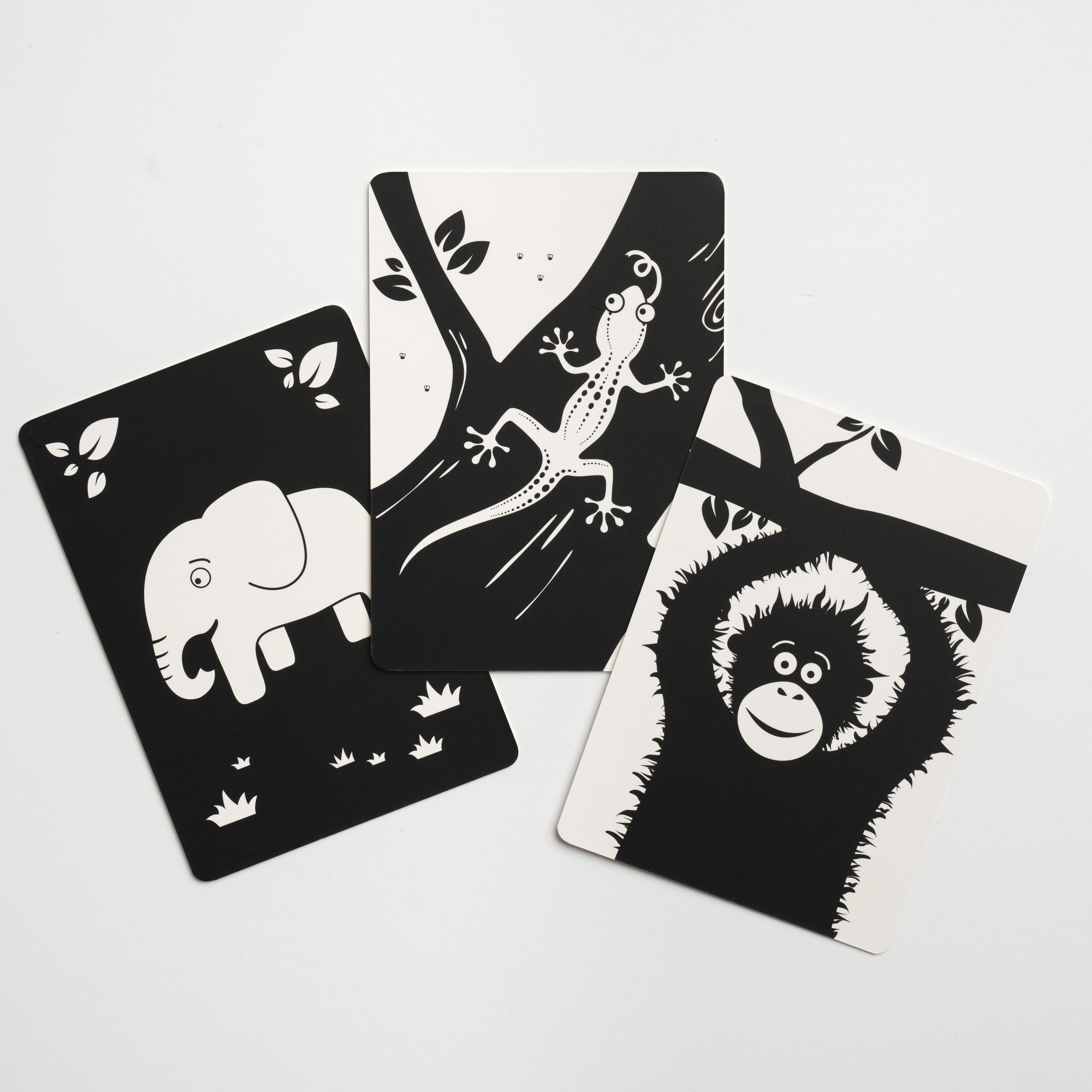 Black And White Flash Cards For Babies Love Monochrome