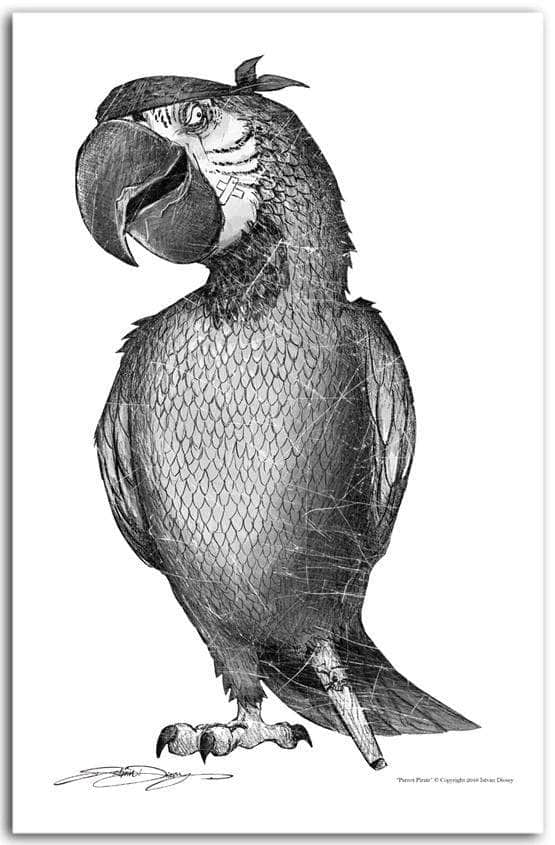 """Black and White Pen/Ink Parrot Pirate"""