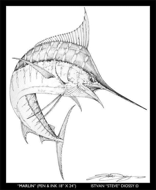 "Original Pen/Ink ""Marlin"" by Diossy"