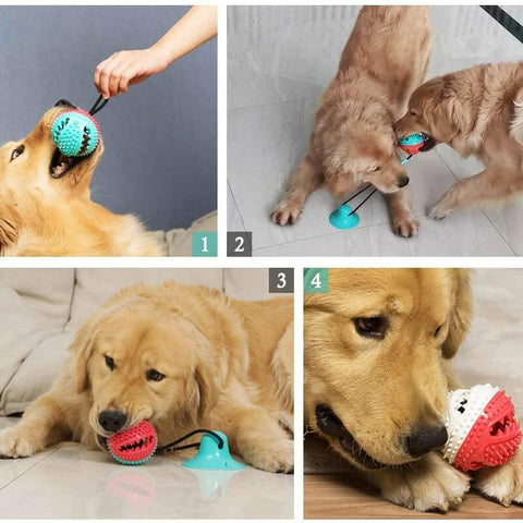 Pet Dog Molar Rubber Chew Toy