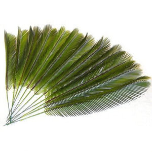 12 x Artificial Cycas Palm Leaves - Easter - 41cm - Palm Sunday - Plastic Palms