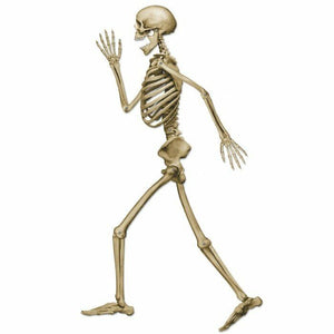 Jointed Skeleton Decoration - 94 cm Tall - Cardboard Halloween Party Decorations