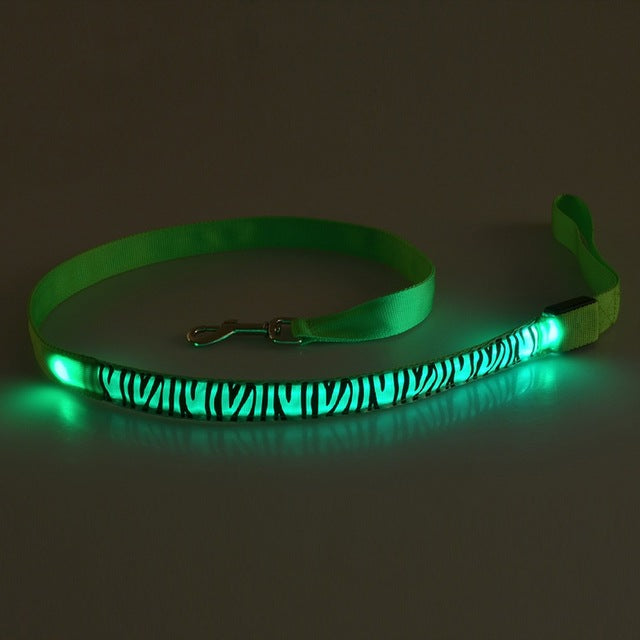 Nylon LED Pet Dog Collar Night Safety Flashing Glow In The Dark Dog Leash Dogs Luminous Fluorescent Collars Pet Supplies - Outdoor Panther