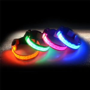 Nylon LED Pet Dog Collar,Night Safety Flashing Glow In The Dark Dog Leash,Dogs Luminous Fluorescent Collars Pet Supplies P20 - Outdoor Panther