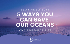 5 Ways You Can Save Our Ocean