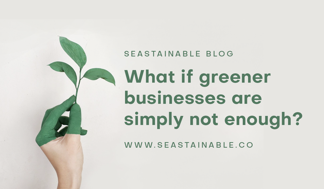 Are we hypocrites for running a green business?