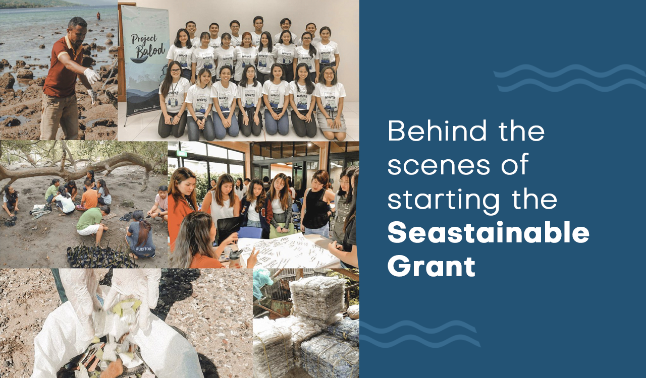 Birth pains and behind the scenes of our Seastainable Grant