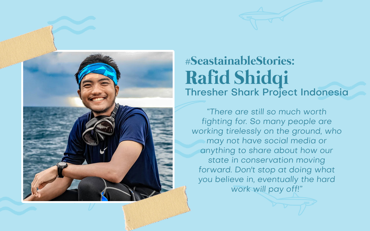 #SeastainableStories - Rafid Shidqi, Thresher Shark Project Indonesia
