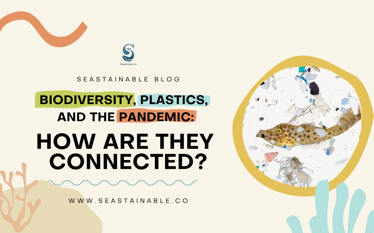 Biodiversity, Plastics, and the Pandemic: How are they connected?