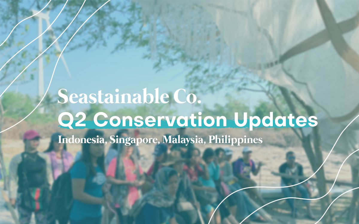 Seastainable Initiatives for Marine Conservation | Q2 Updates
