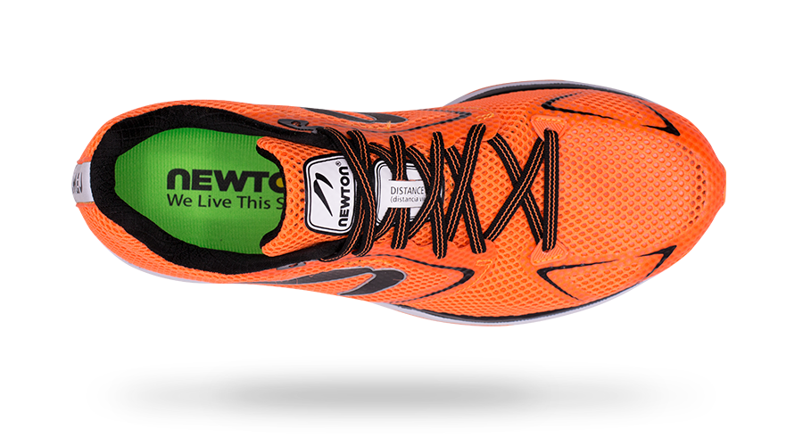 Newton Men's Distance 8 top view