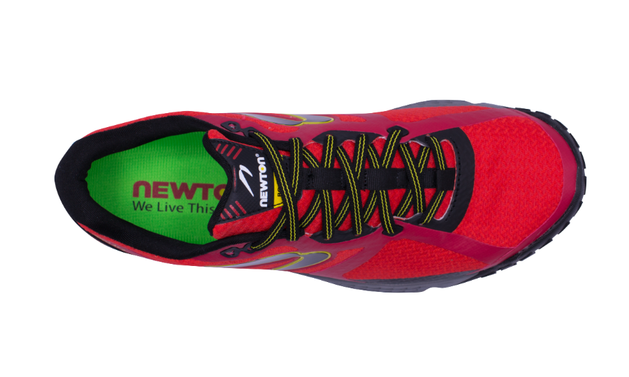 Men's Newton BOCO 4 top view