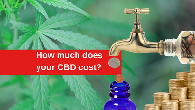 How much does your CBD actually cost?