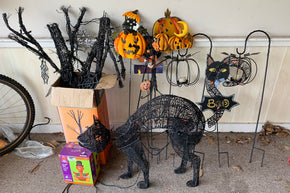 Halloween Decor Collection