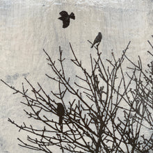 Load image into Gallery viewer, ART BLOCK - BIRDS IN TREES SERIES B
