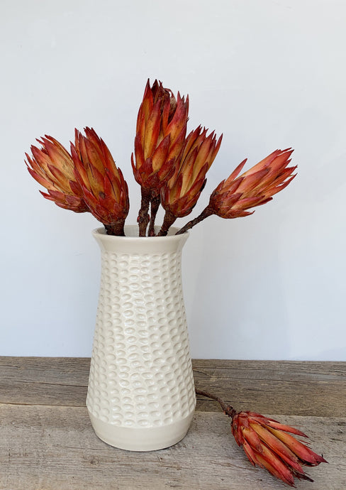 IVORY SHELLEY VASE IN CORAL
