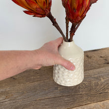 Load image into Gallery viewer, IVORY TOBI VASE IN CORAL B