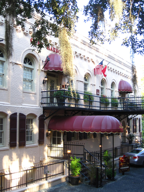 architecture of hotels with hanging spanish moss on river street in savannah georgia
