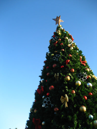 a fully decked christmas tree with a backdrop of a bright blue sky