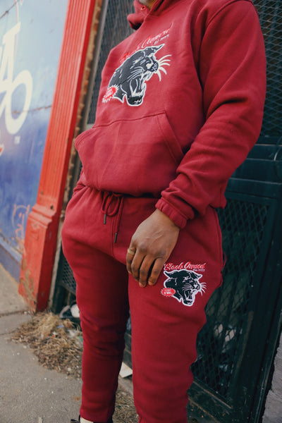 Brick Red Vintage Panther Pullover Set with Embroidery Details