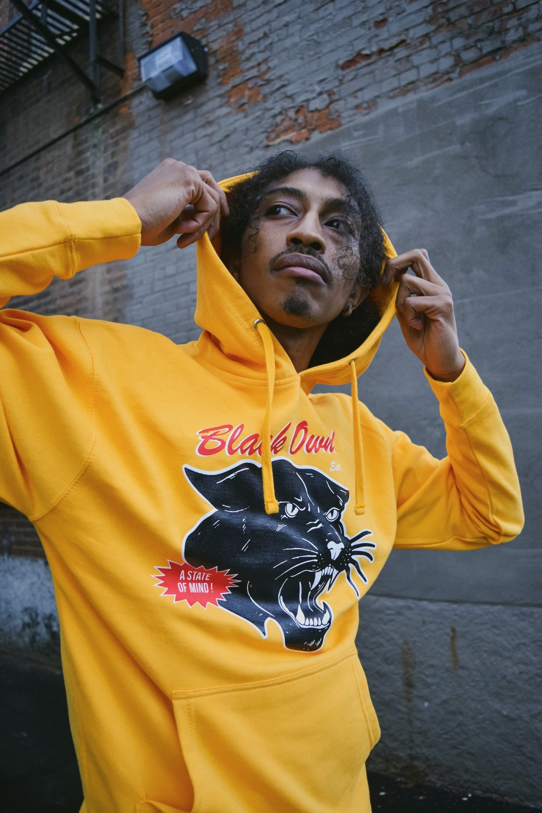 Vintage Panther Pullover Hoody (Yellow)