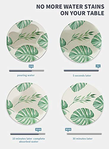 Monstera Leaf Ceramic Coasters w/ Cork Back Set of 6