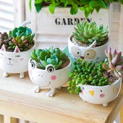 Cute Animal's Standing Ceramic Pot
