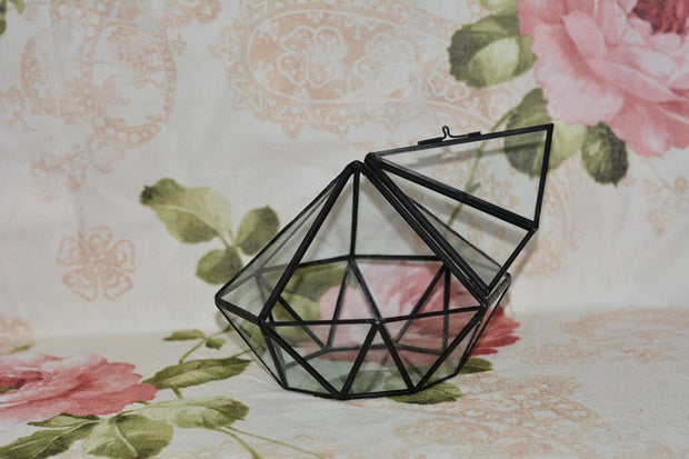 Diamond Shaped Terrarium