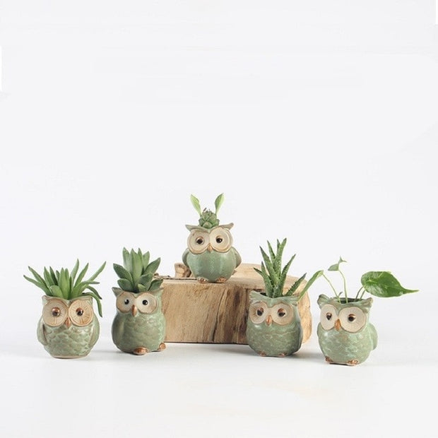5 PC Owl Pot Set