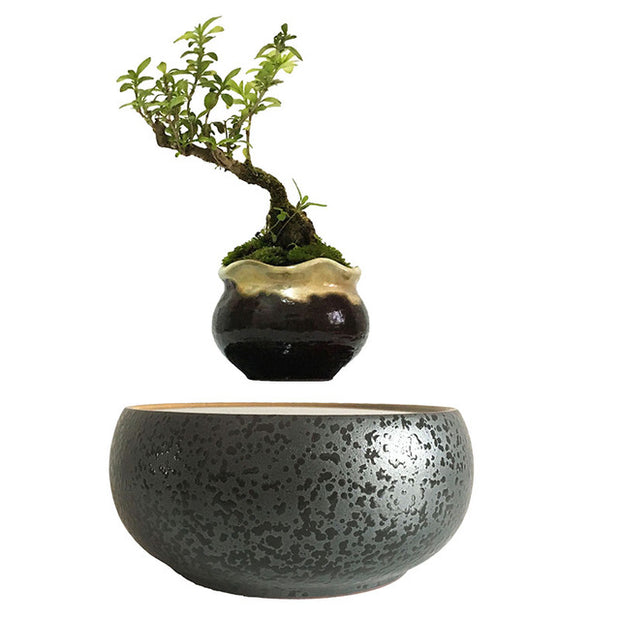 Dark Splatter - Levitating Planter