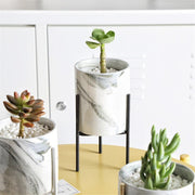 Nordic Marble Pot w/ Stand