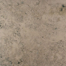 Load image into Gallery viewer, Fossil Blue Natural Limestone Tile Sample
