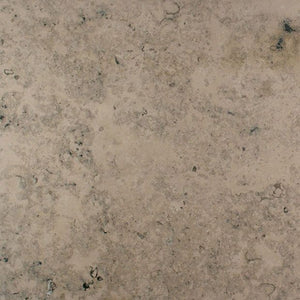 Fossil Blue Natural Limestone Tile Sample