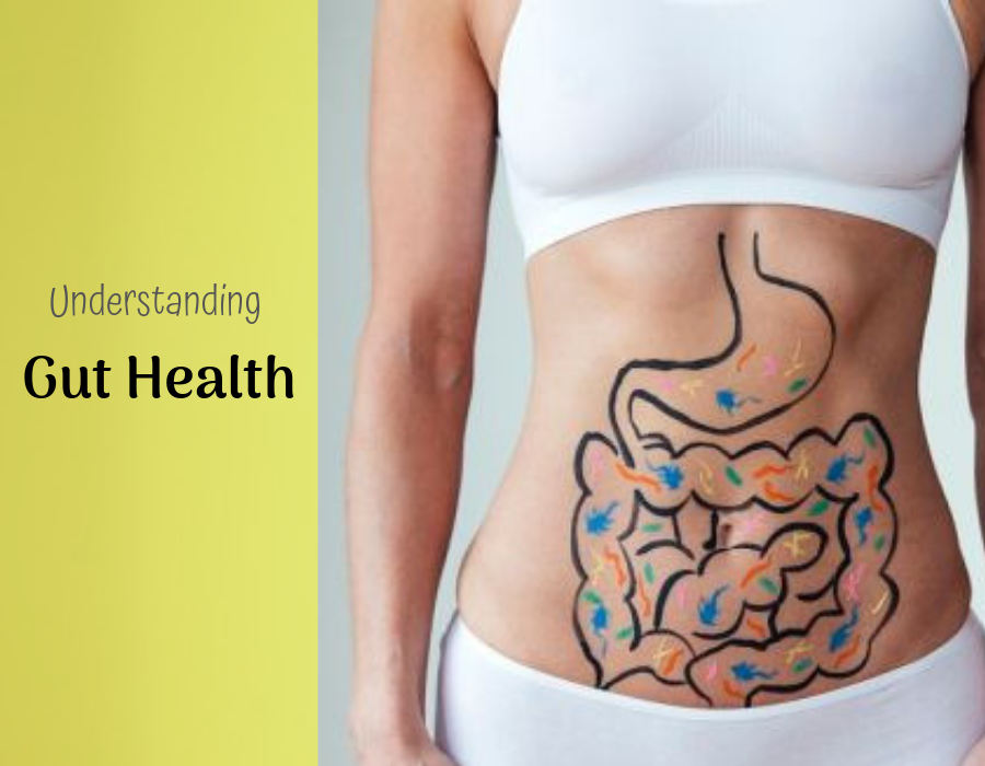 Understanding Gut Health