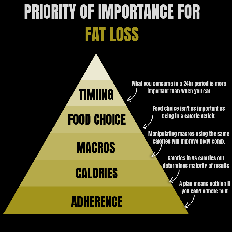 Priority of Importance For Fat Loss