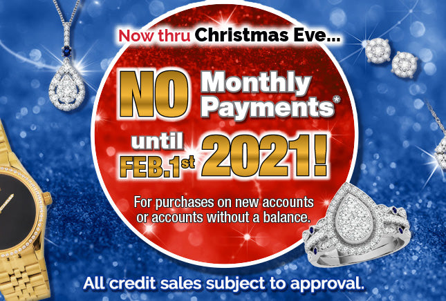 No Monthly Payments until February 2021!*