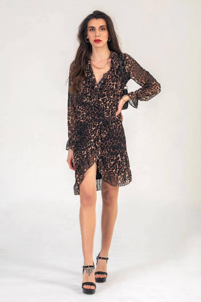 Leopard Print Wrap Dress With Long Sleeves