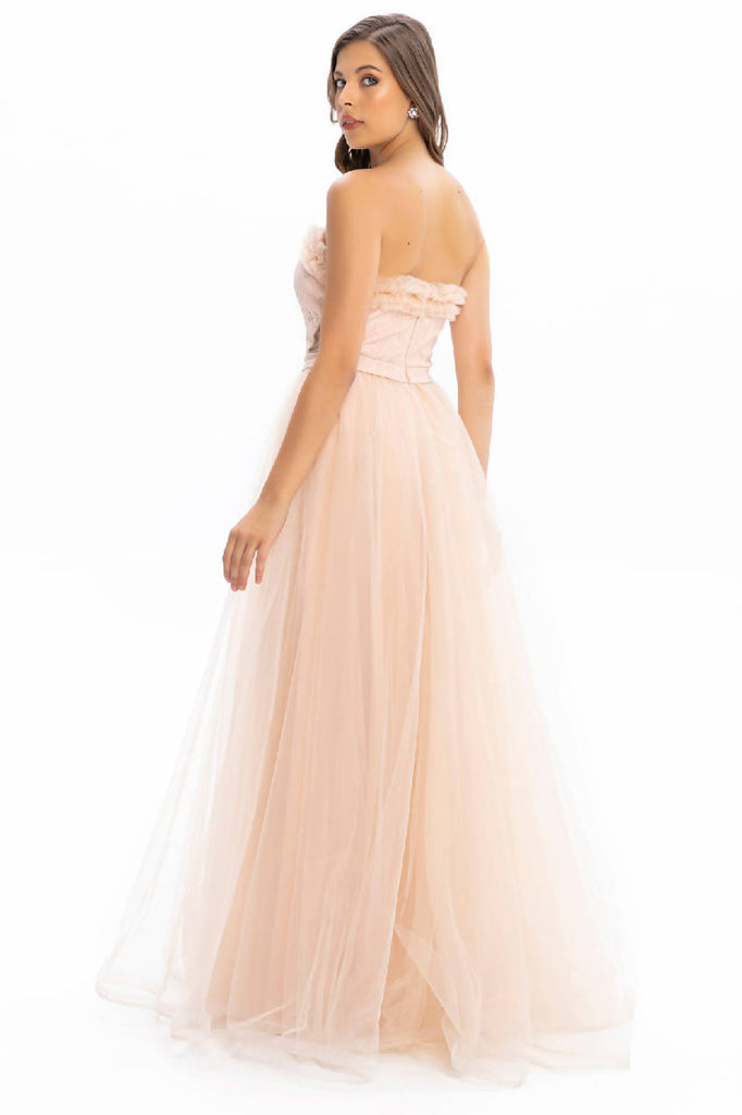 Powderpink Strapless Stone Detail Tulle Long Dress