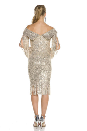 Fringe Detailed Sequin Mini Dress