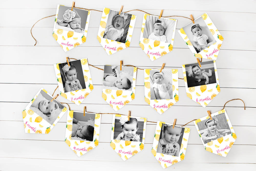 Lemonade Monthly Banner for First Birthday Party