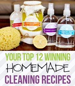 Your Top 12 Contest Winning Homemade Cleaning Recipes eBook