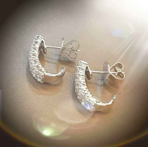 Sophisticated Earring