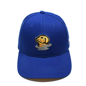 Foggy Dogs Mascot Hat