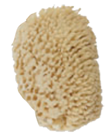 Tropical Seas® Natural Yellow Sea Sponge