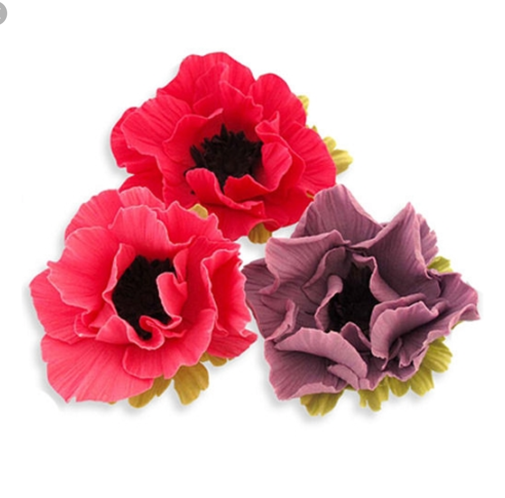 JEM Anemone Cutter Set - 4pcs