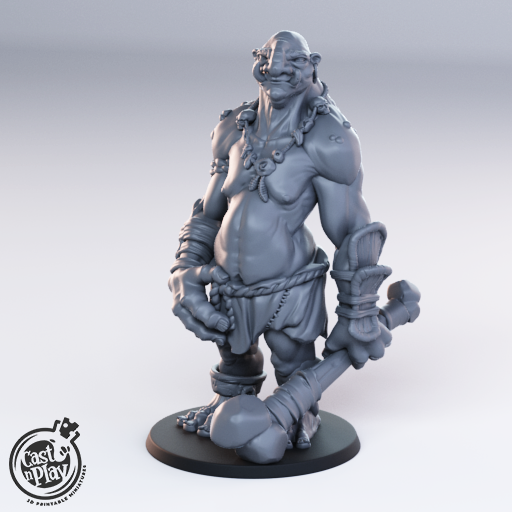 CNP 28mm Troll Standing B Wargaming/Medieval D & D