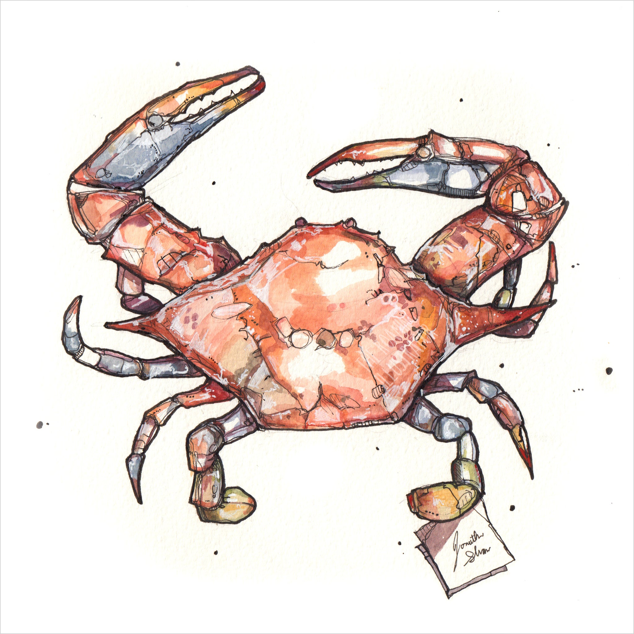"""Red Crab"" - Original 8x10 Illustration (SOLD)"