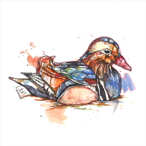 """Mandarin Duck"" - Original 8x10 Illustration"