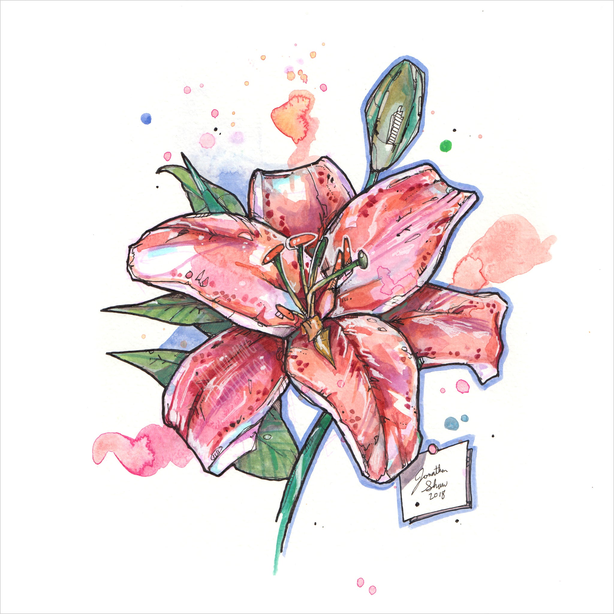 """Red Lily"" - Original 8x10 Illustration (SOLD)"